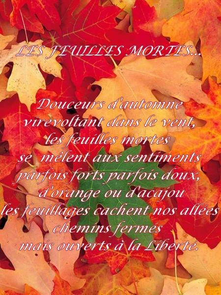 """""""l'automne est le printemps de l'hiver"""""""